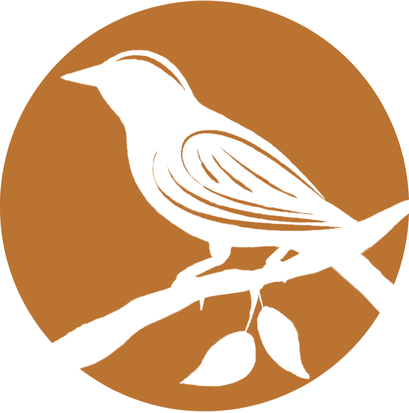 Pennies and Sparrows